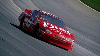 Dale Earnhardt Jr's No. 8 car remains a favorite paint scheme among many of his fans.